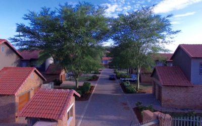 Duplex Houses x 13